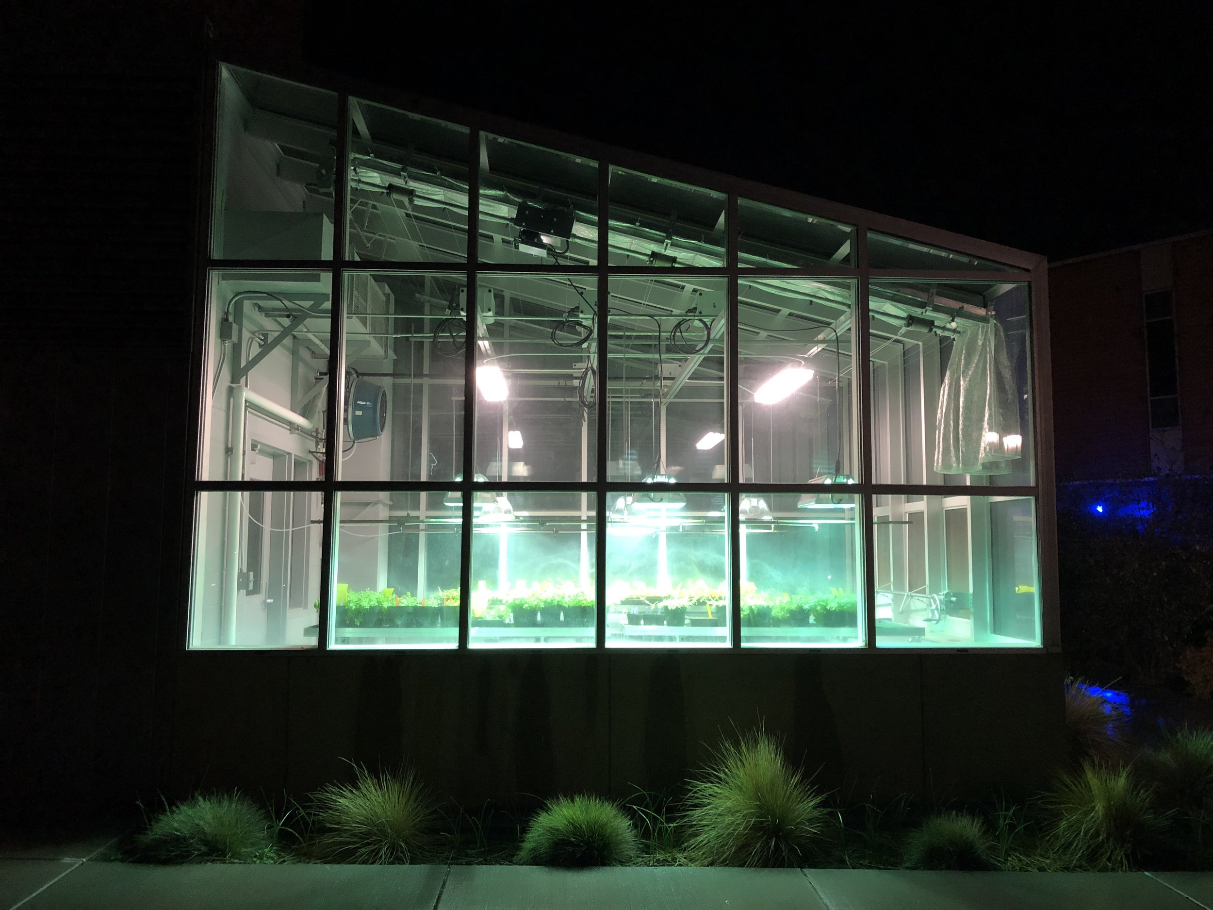 the greenhouse next to the science bldg.