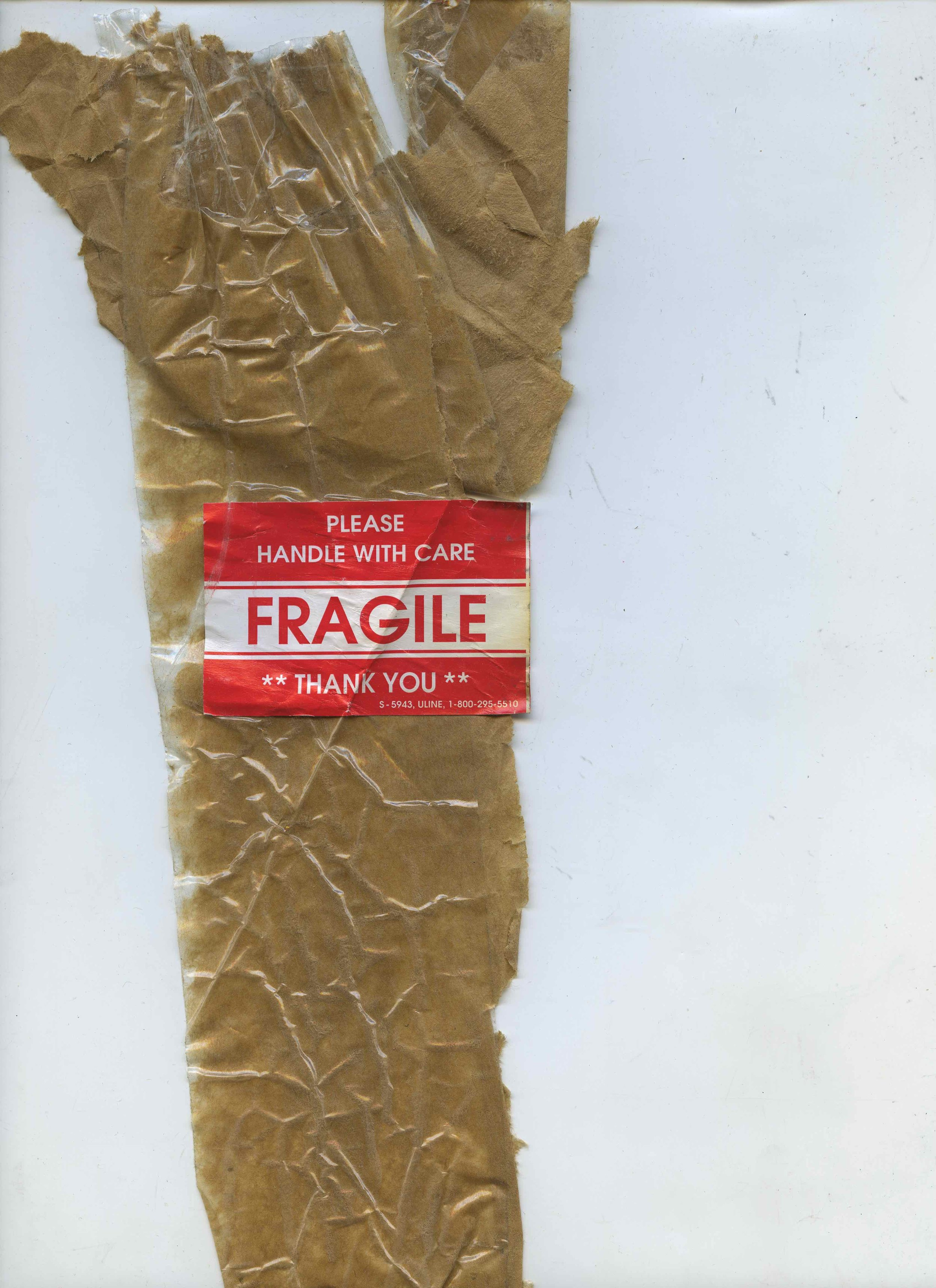 fragile036.jpeg