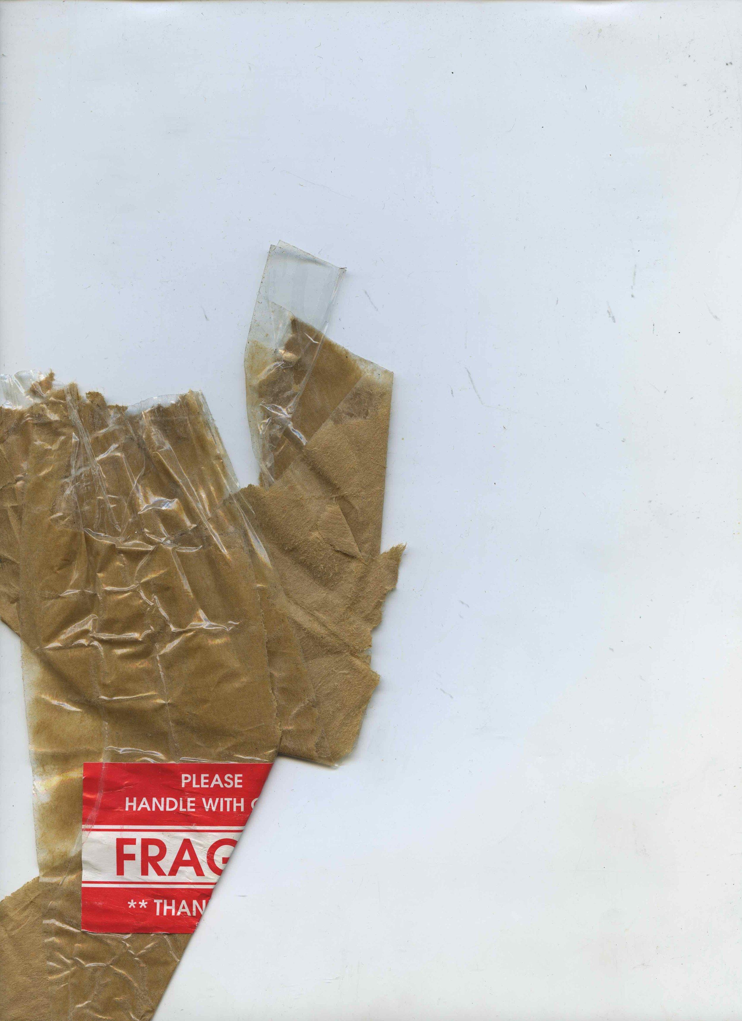 fragile037.jpeg
