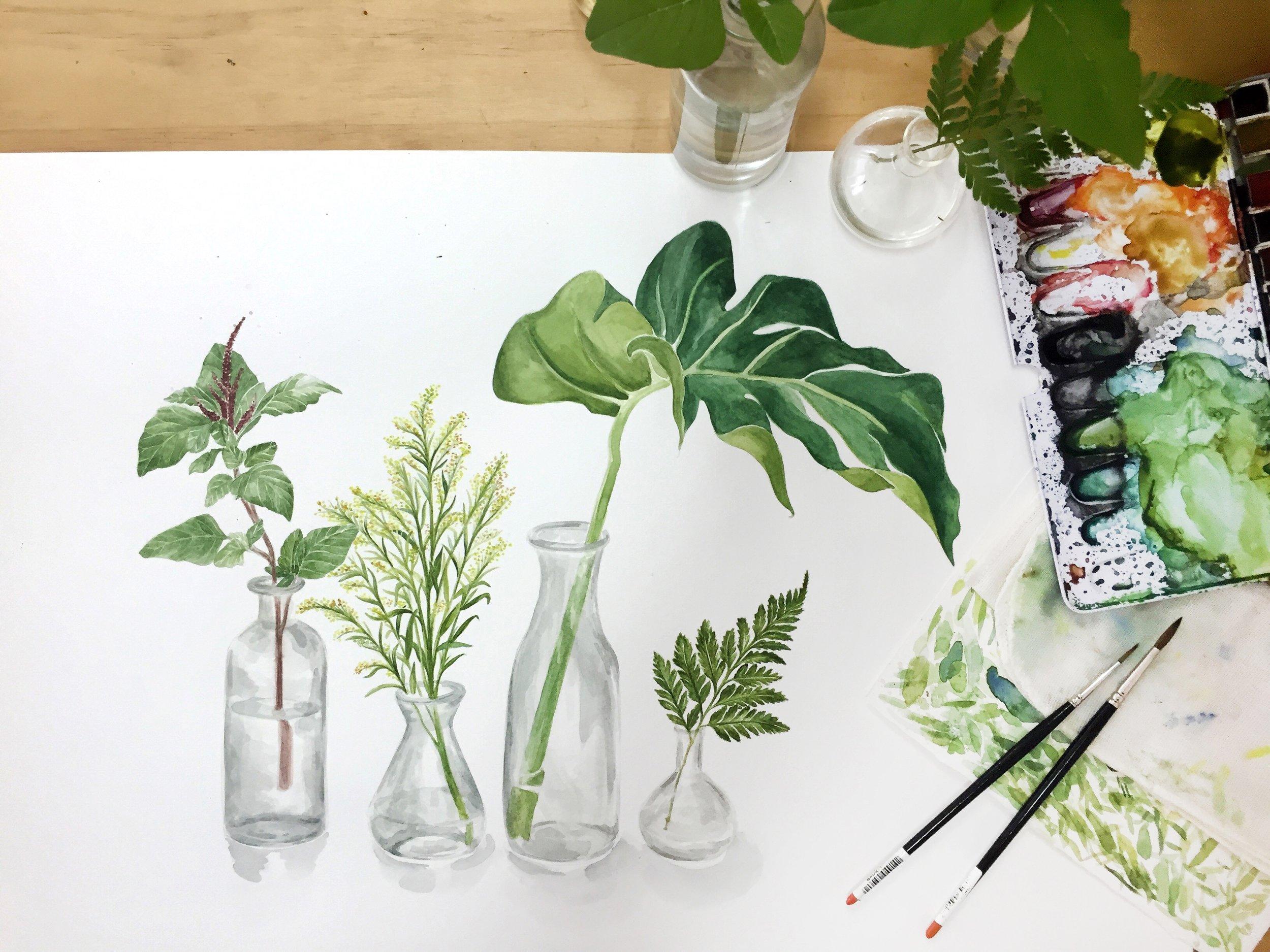 botanical_watercolour1.jpg
