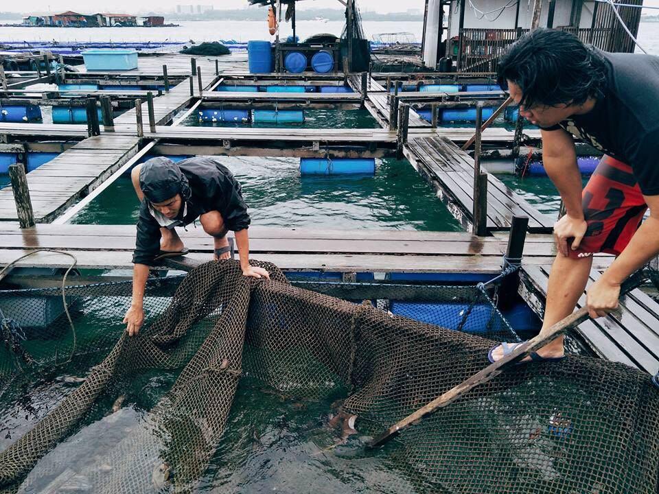 Orhand Agraian - Fish farmers_Seafood subscription.jpg