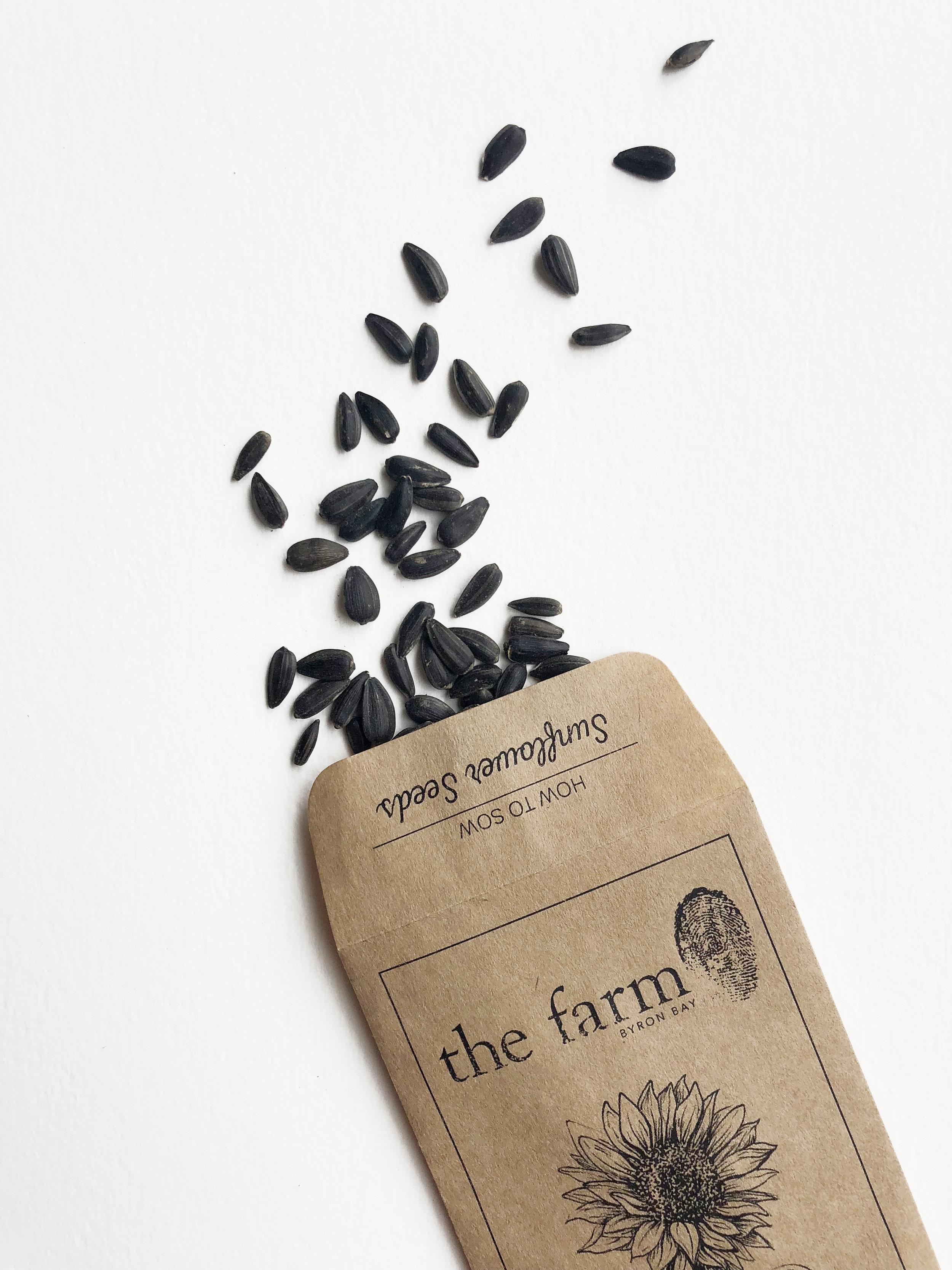 seedsspill.jpg