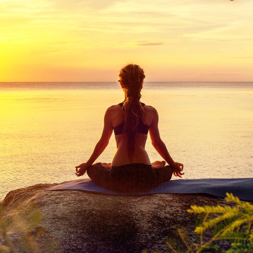 man wird, worauf man sich konzentriert.Konzentrieren sie sich daher immer auf das höchste, strahlendste, glücklichste und nobelste aller Dinge, die Erleuchtung.Meditation ist der Weg zur erleuchtung, ausgewogenheit, glück, liebe und veständnis.Ein großartiges abenteuer erwartet sie auf dem pfad zur selbstfindung. -
