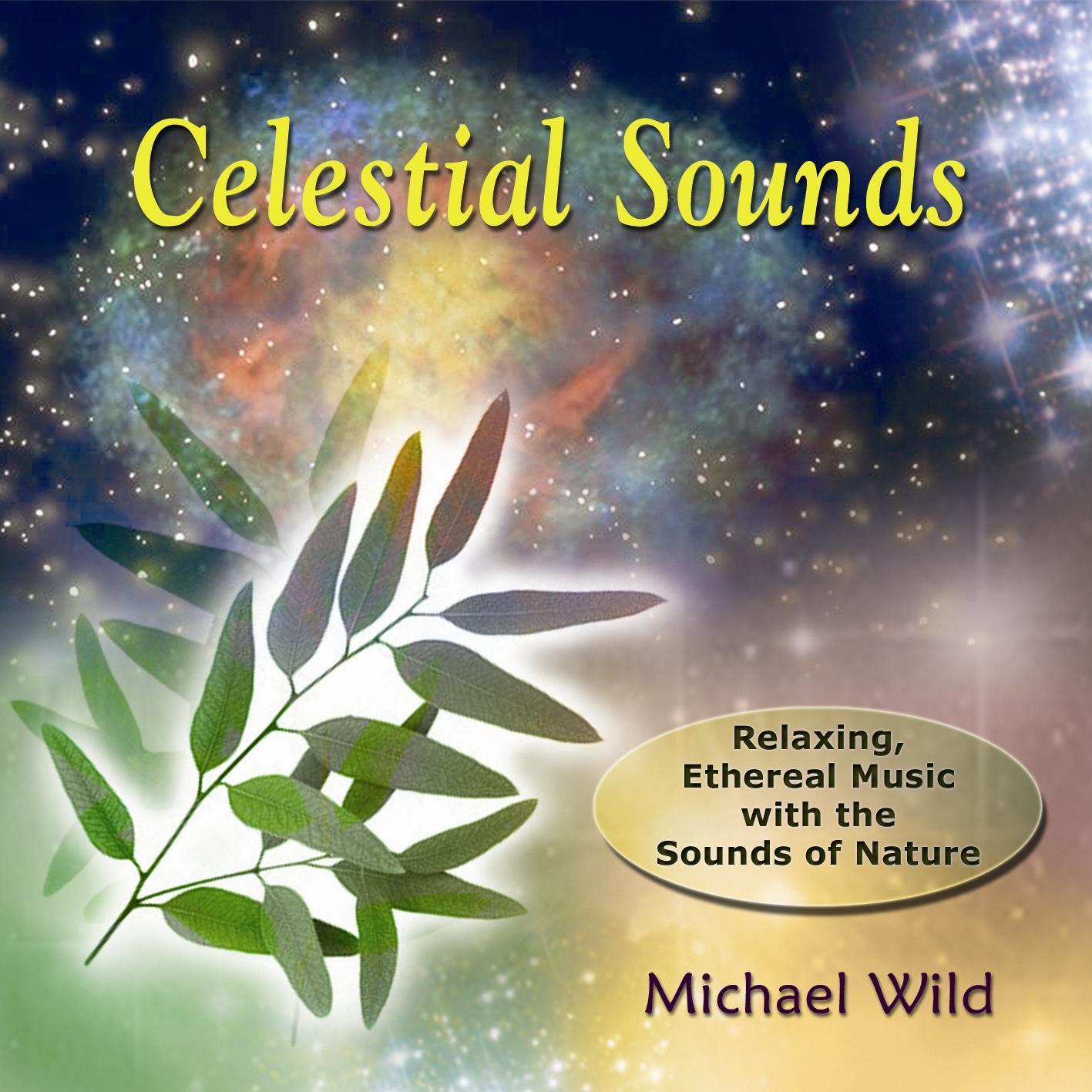 Celestial Sounds (1986)