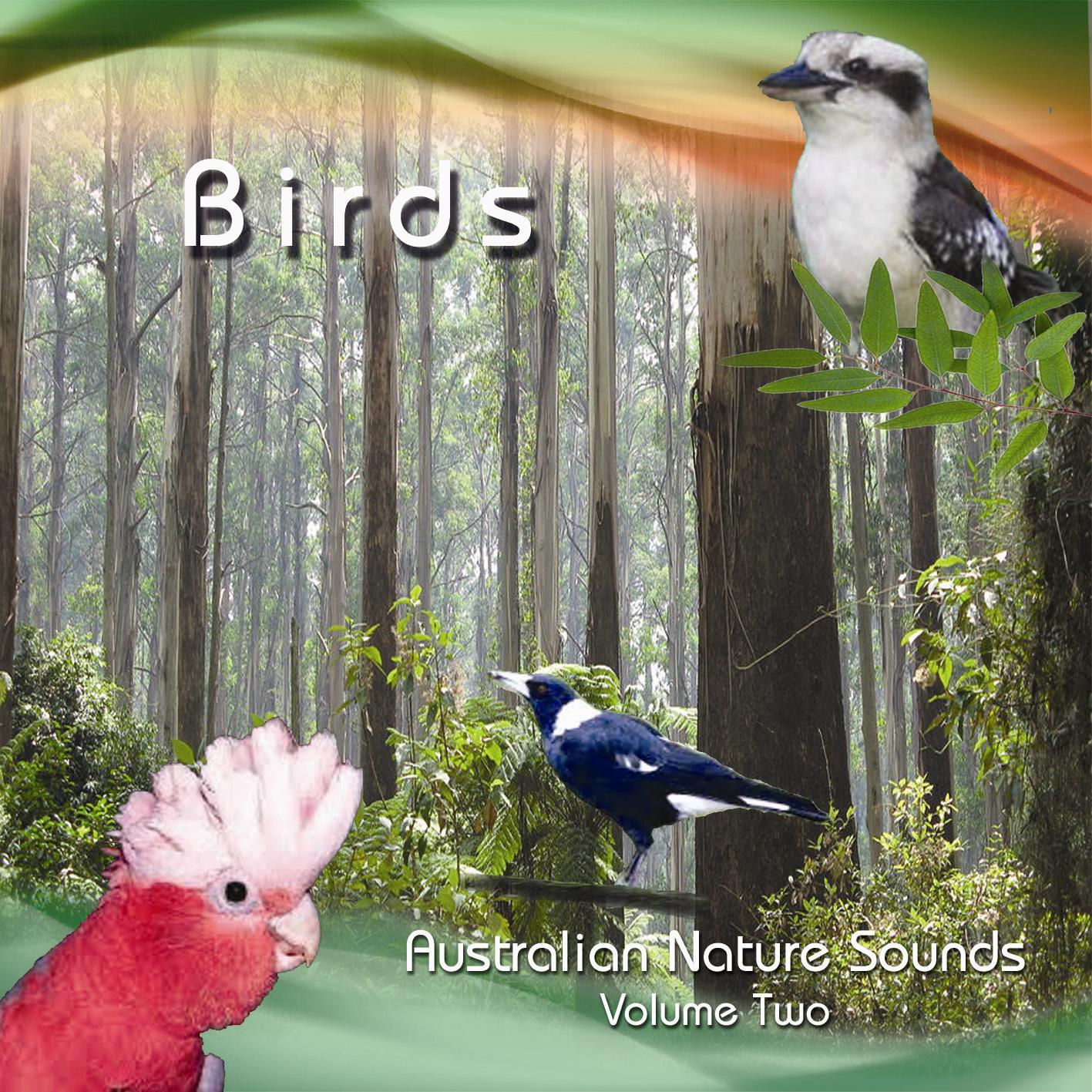 Birds (NMS Volume 2)