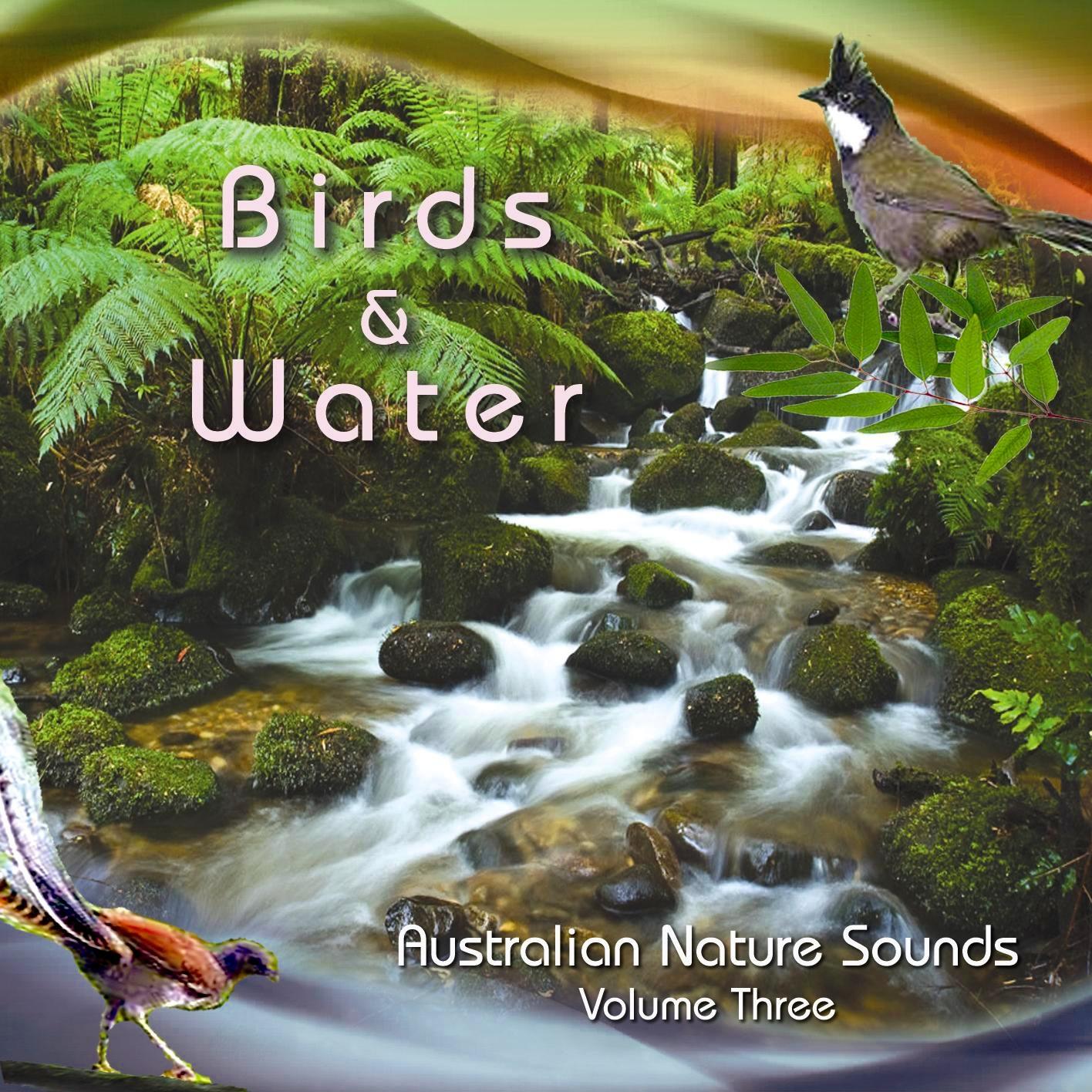 NM+3+Birds+%26+Water+1.jpg