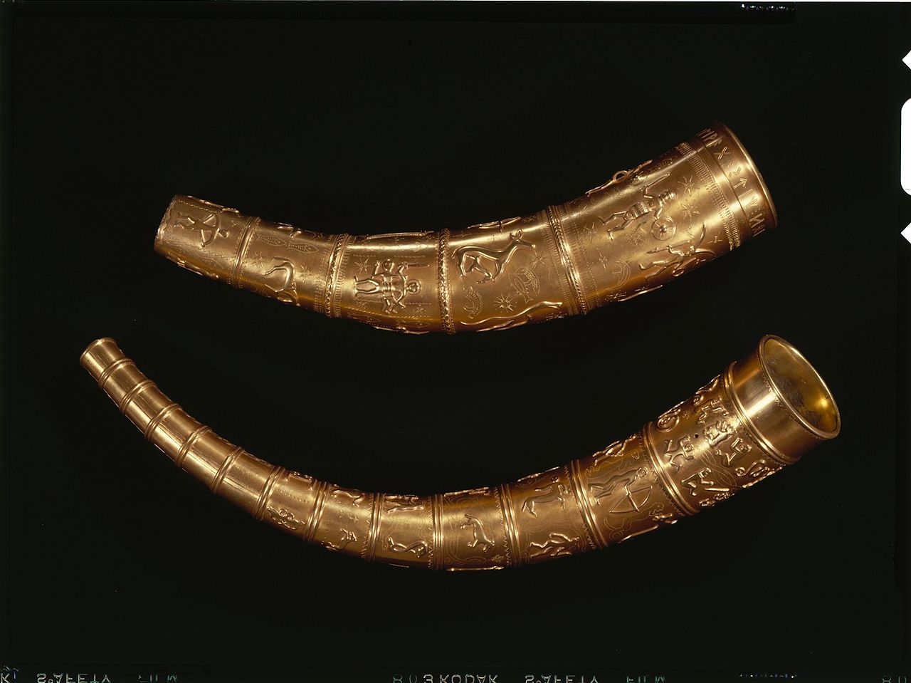 Replicas of the lost horns of Gallehus. The National Museum in Copenhagen.