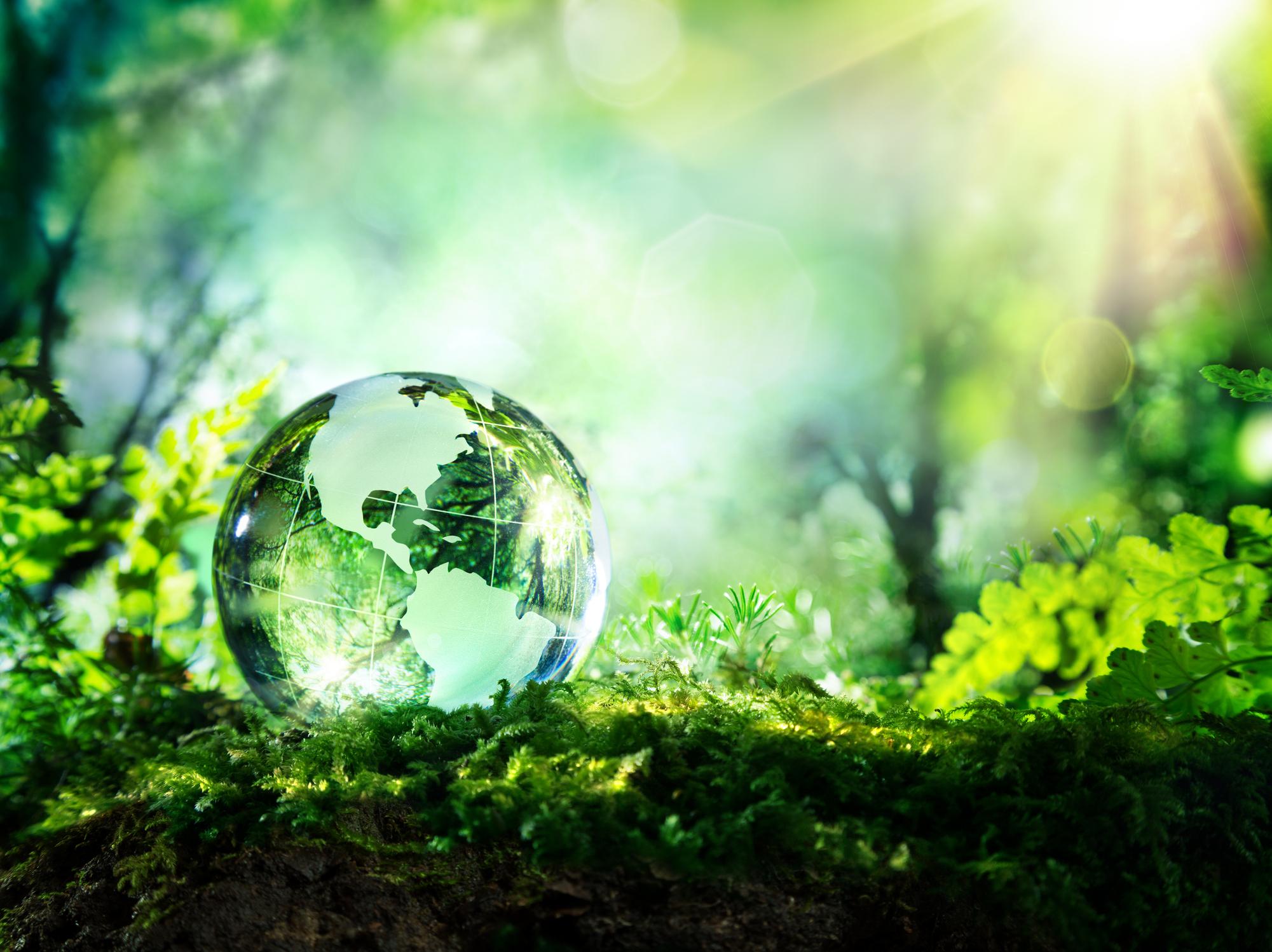 Ytre miljø -