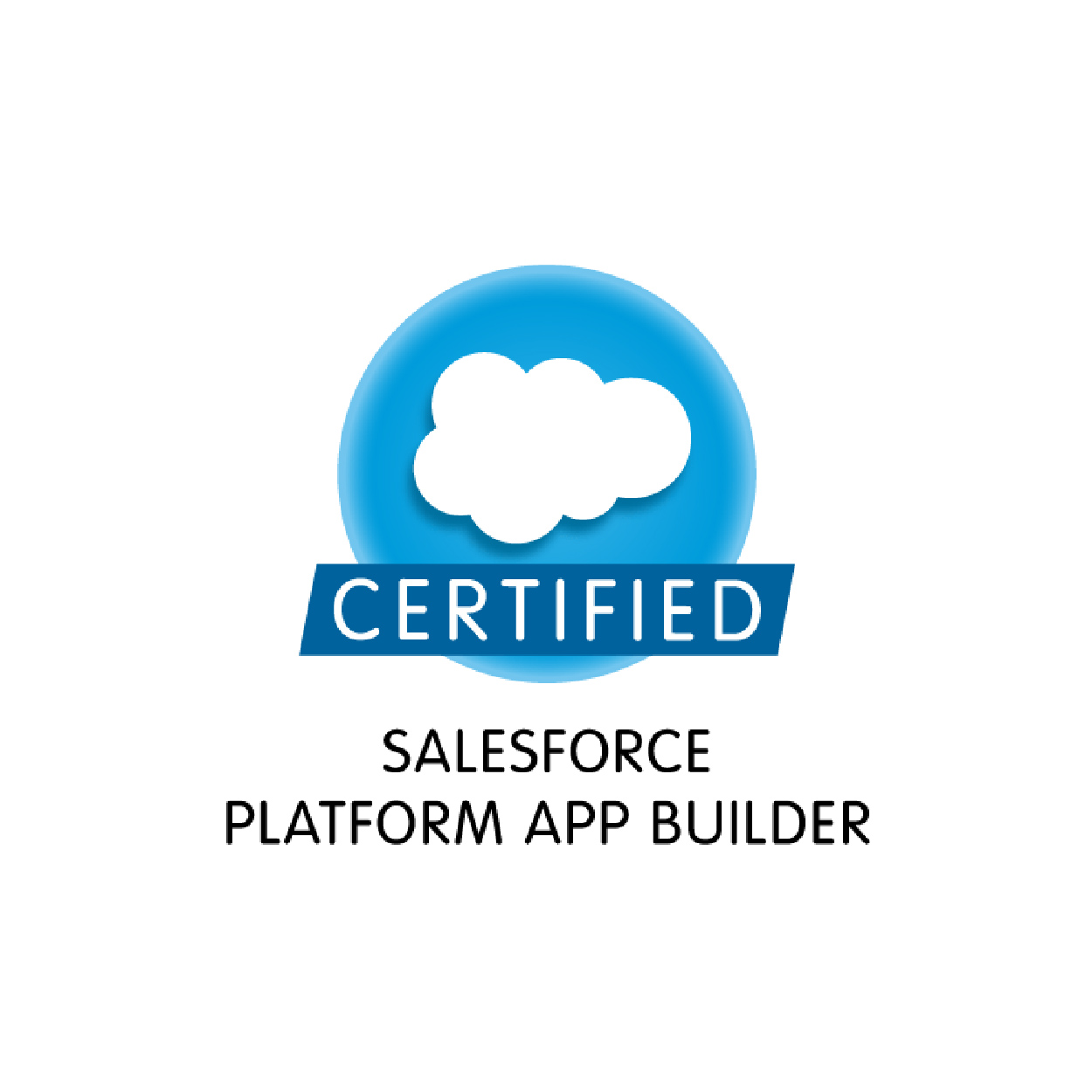 salesforce_certified-05.jpg
