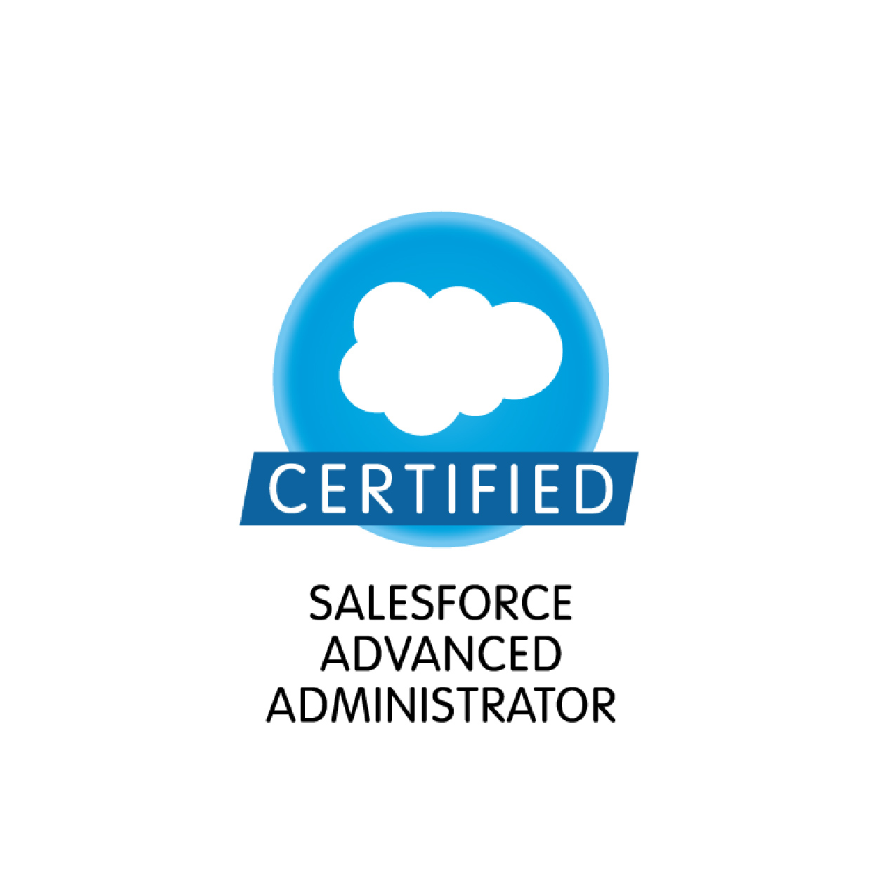 salesforce_certified-09.jpg