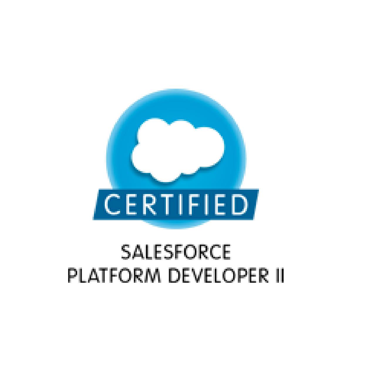 salesforce_certified-06.jpg
