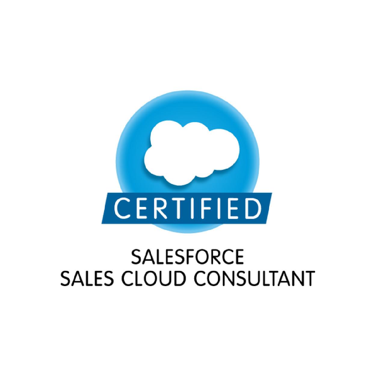 salesforce_certified-07.jpg