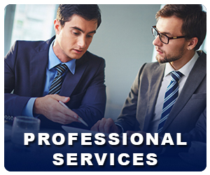 PROFESSIONAL-SERVICES.jpg