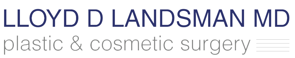 LandsmanLogoPractice.png