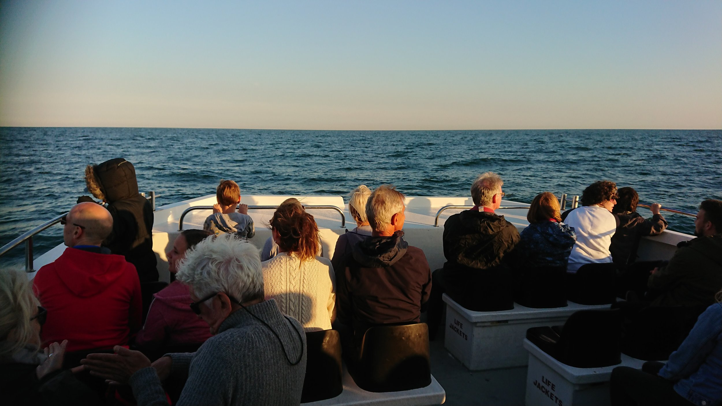 Group of enthusiastic wildlife spotters out on our Sunset Wildlife Cruise © Dylan Walker, World Cetacean Alliance