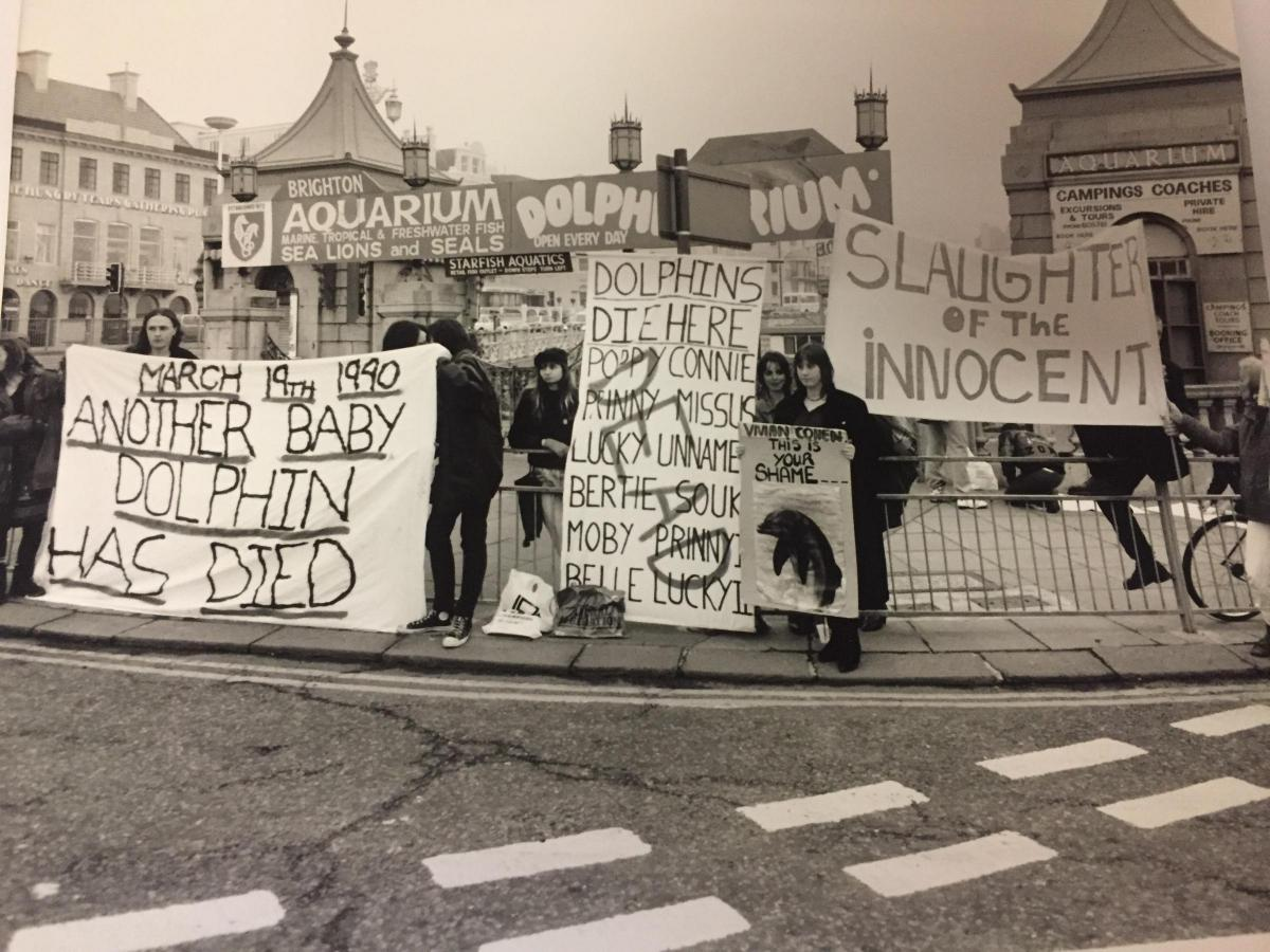 1985-1990: protesters gathered outside the Brighton Hotel Metropole against the Dolphinarium. A review on UK dolphinariums exposed poor conditions that dolphins were being kept in nationwide and the capture of dolphins from the wild.