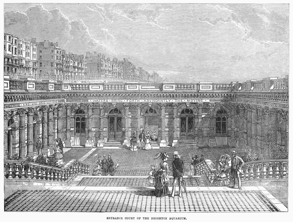 1872: Brighton Aquarium opened to the public. It took 3 years build and cost the equivalent of today's £5.5 million. The marine exhibits included sea lions, an octopus and lobsters.