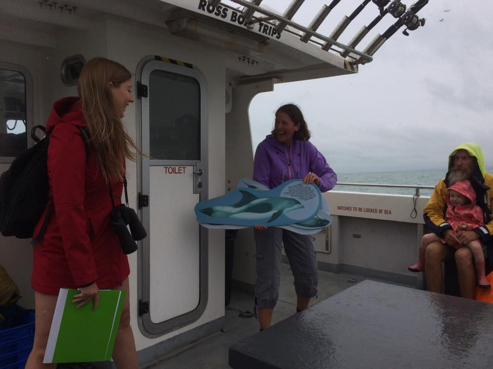 Our volunteers even get the chance to come on board our Wildlife Trips to educate the public about the Dolphins of Sussex.