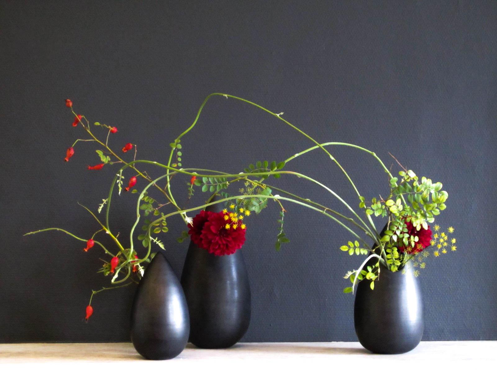 0 jiyu 3 vazen zwart rozebottel.jpg