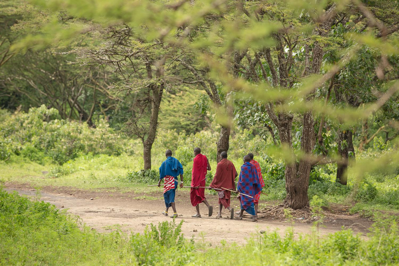 nature_landscape_Africa-2.jpg