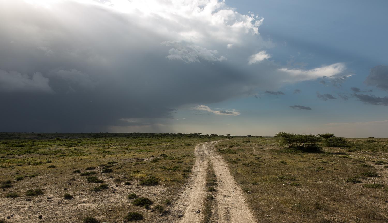 nature_landscape_Africa-3.jpg