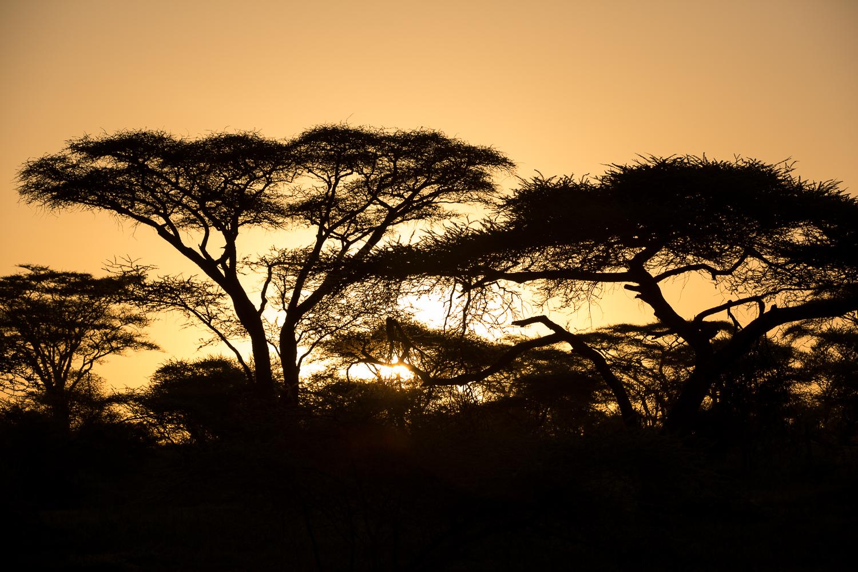 nature_landscape_Africa-15.jpg