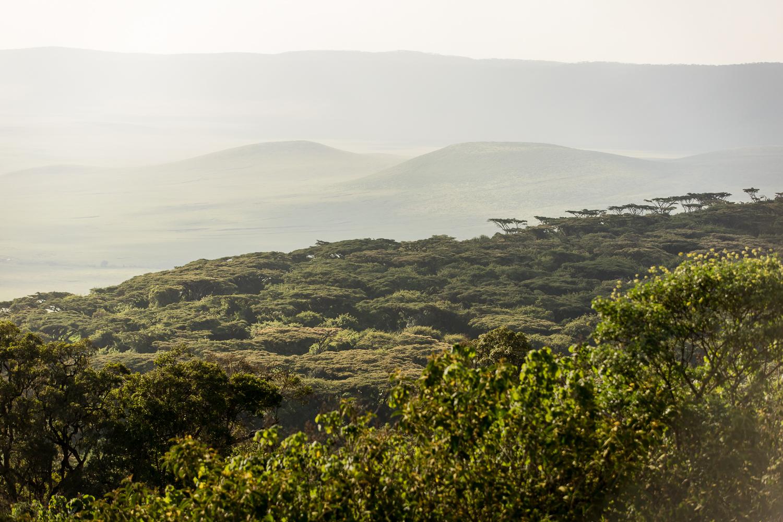 nature_landscape_Africa-17.jpg