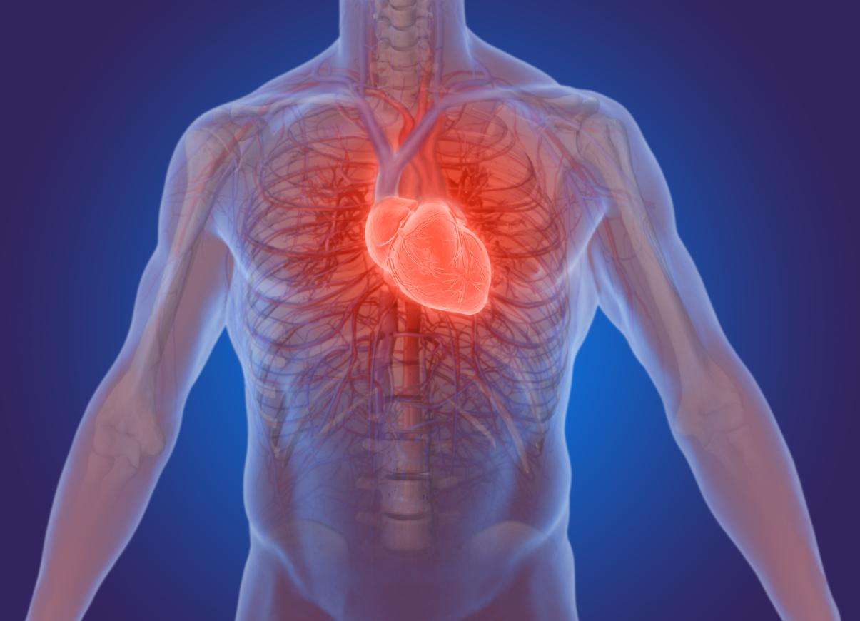 heart-sound-recorder-test.jpg