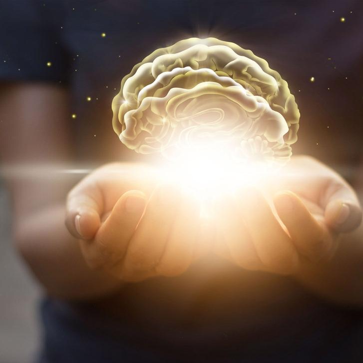 brain span assessment