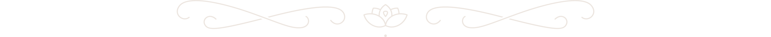 JBT_lotus_divider.png