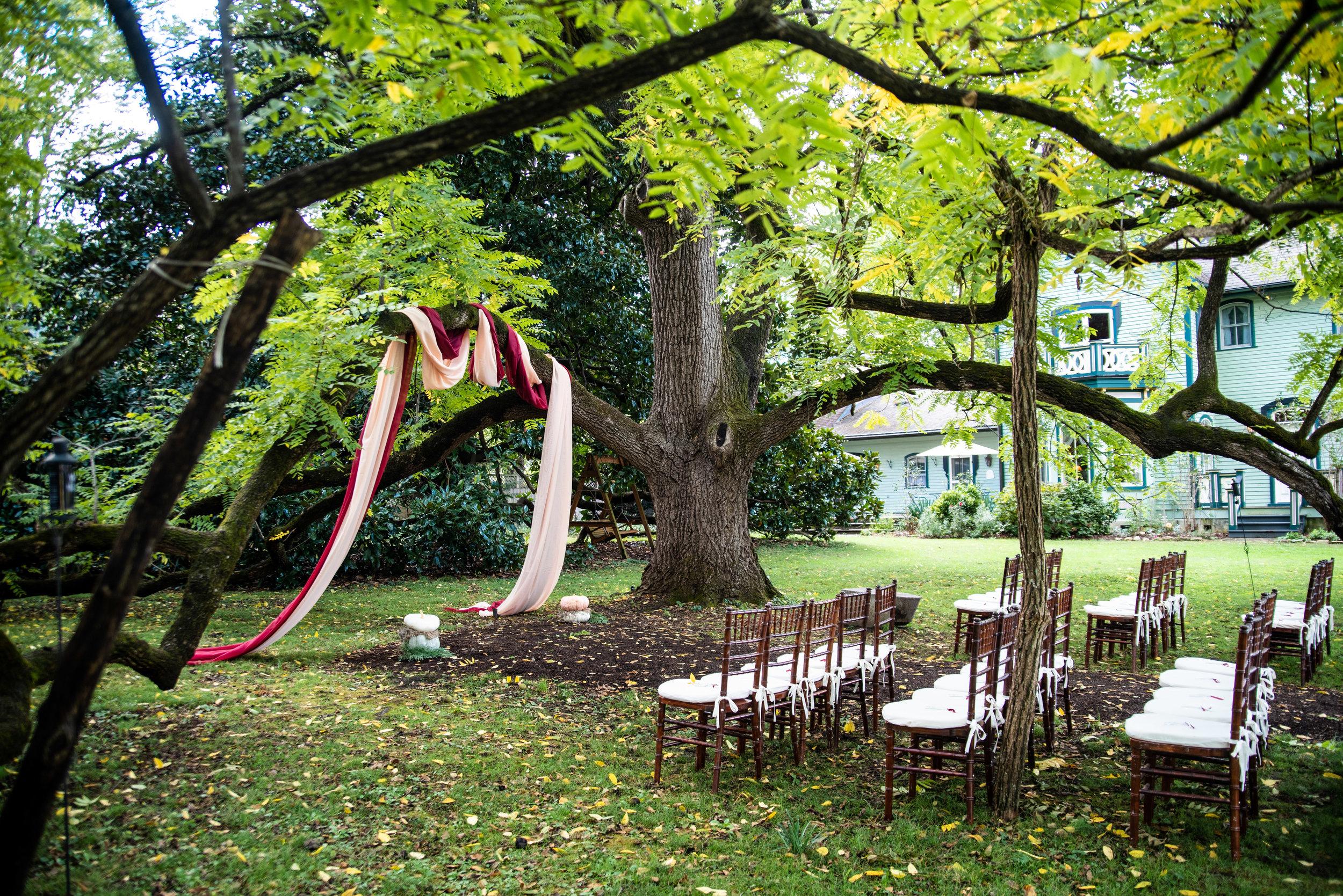 Mountain Magnolia Inn fall wedding under big tree in Hot Springs, NC
