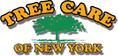 tree-care-of-newyork.png