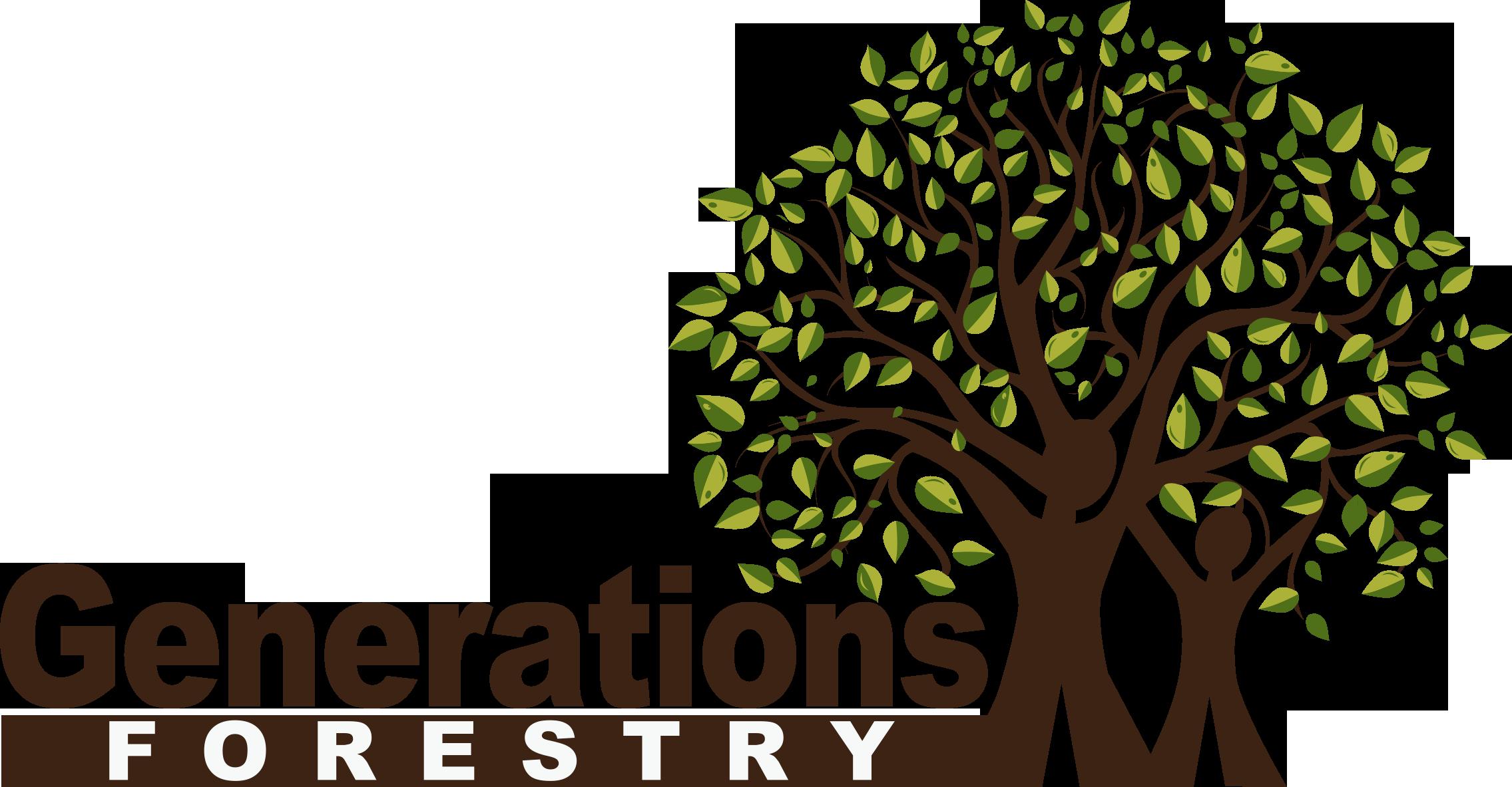 Generations 2013 Logo.png