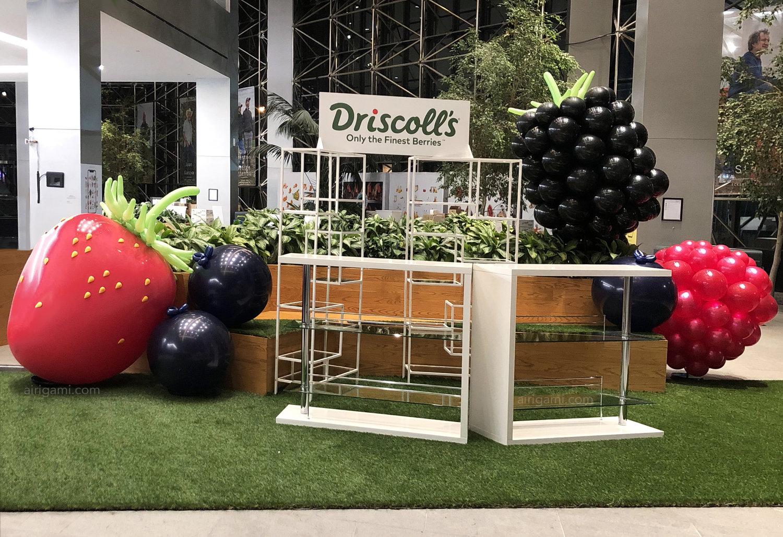 Airigami-driscolls-balloon-sculpture-berries.jpg
