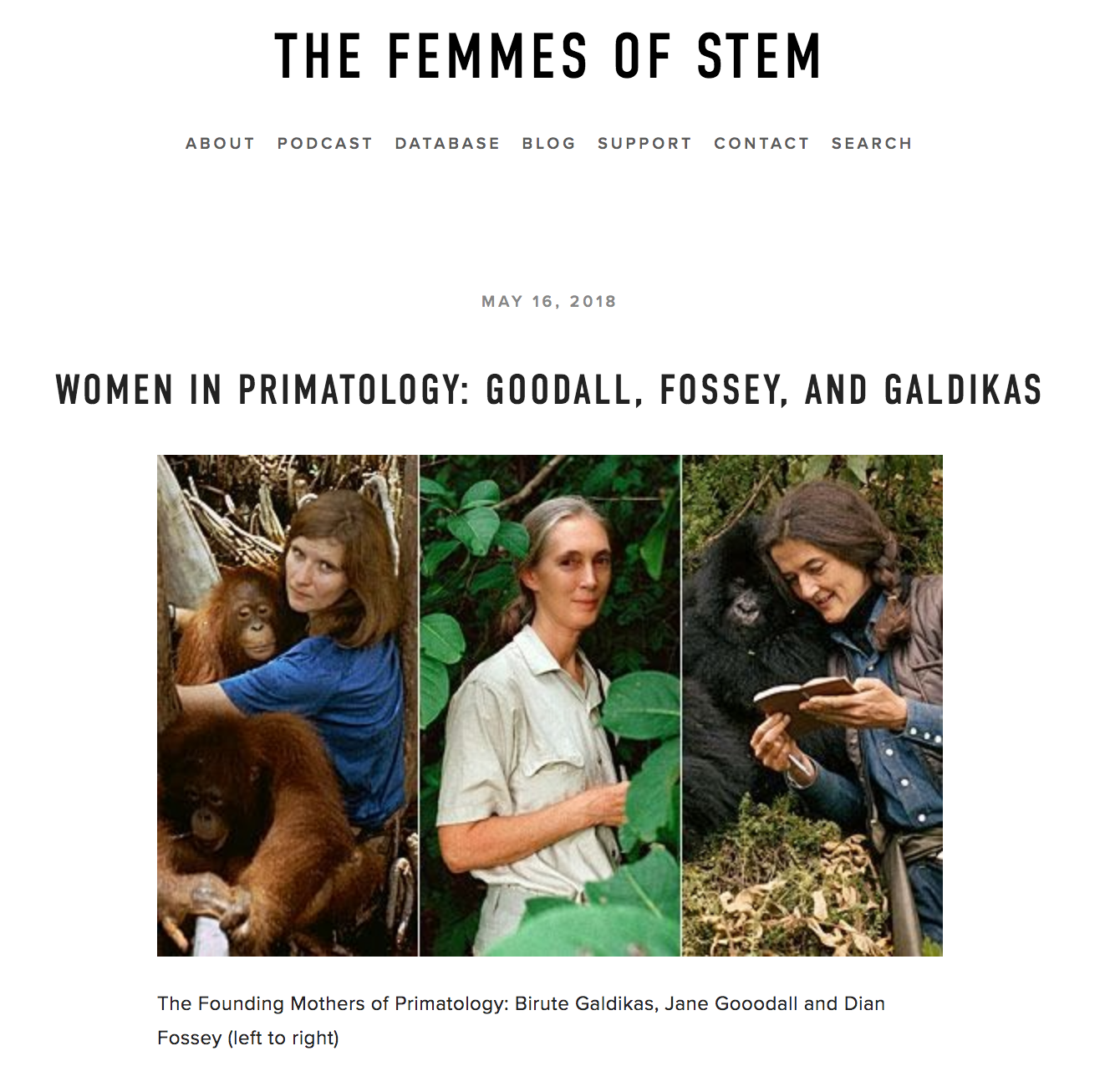 Femmes of STEM - Contributing Member at Femmes of STEM Podcast and Blog: a science history collective dedicated to sharing the stories of women in the history of science, technology, engineering, and mathematics (May 16, 2018)
