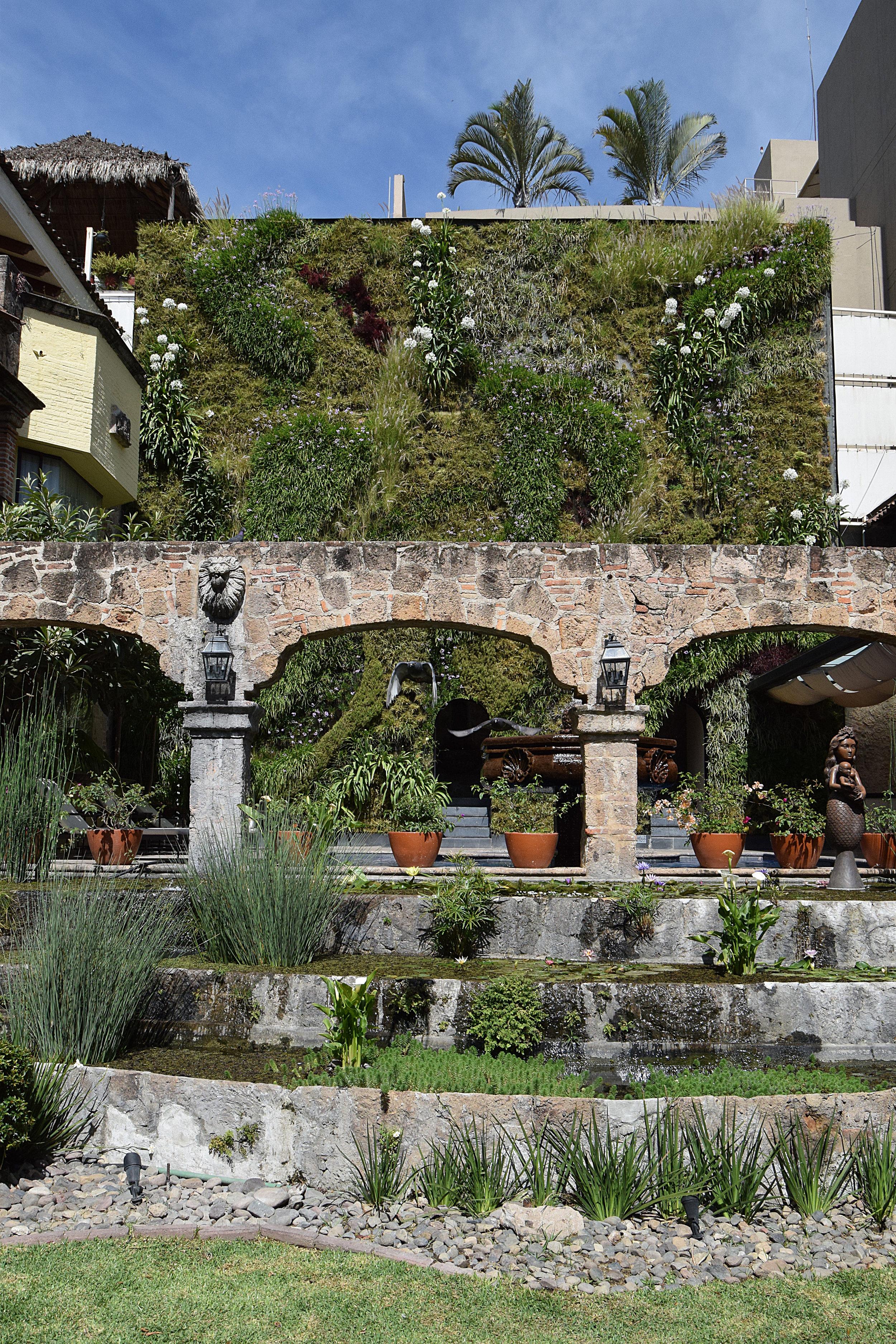 Plantica Quinta Real 8