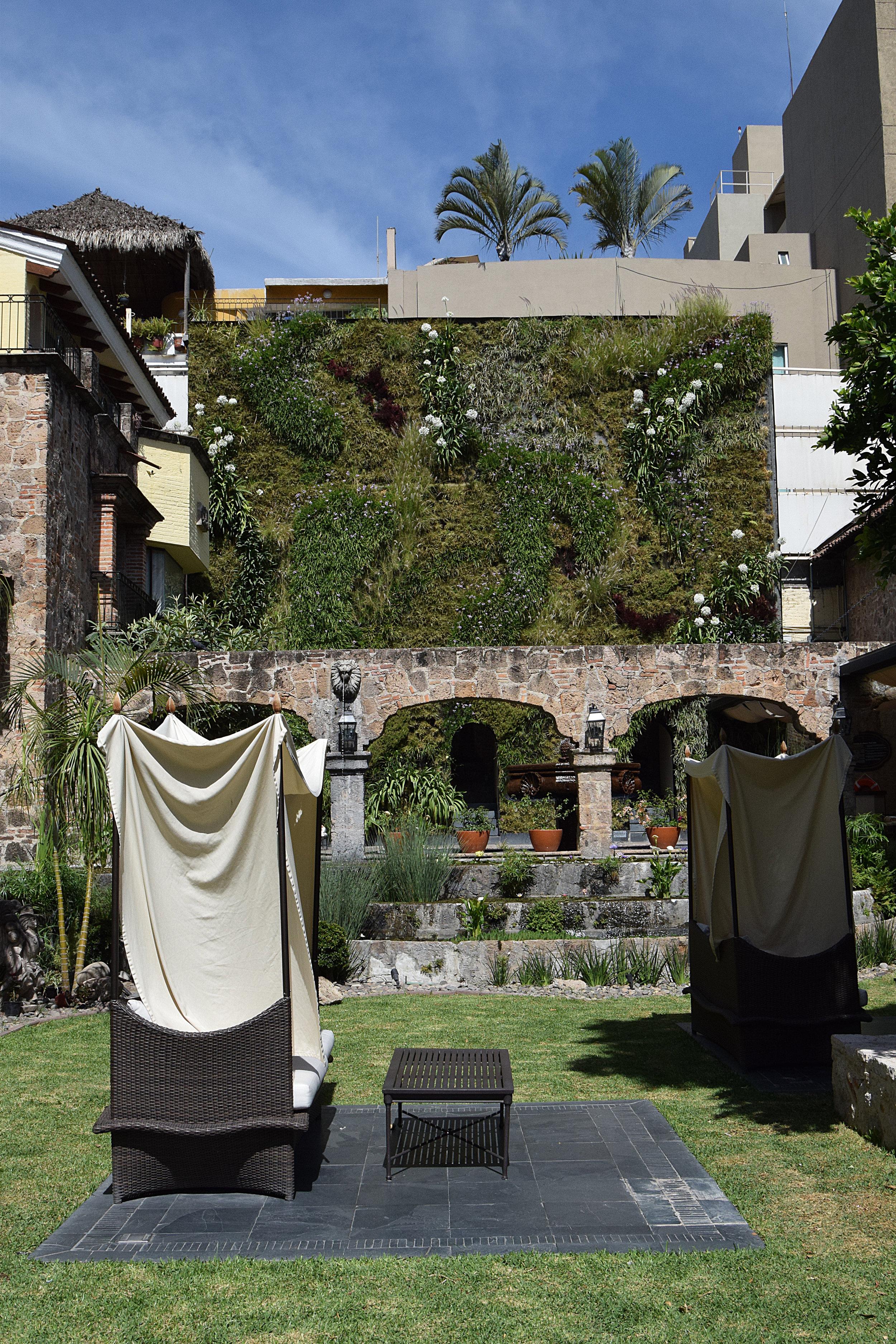 Plantica Quinta Real 10