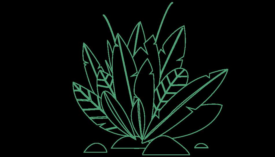 plantas_cultivadas_plantica