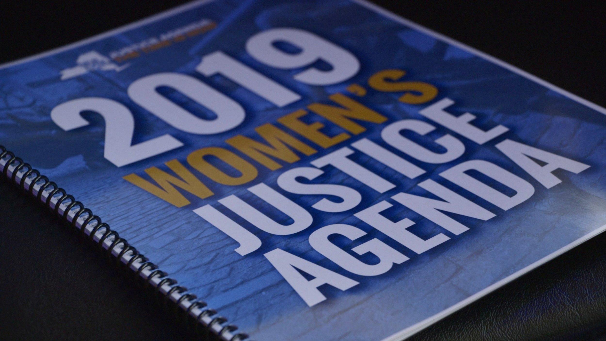 Women's Justice Agenda DVSJA