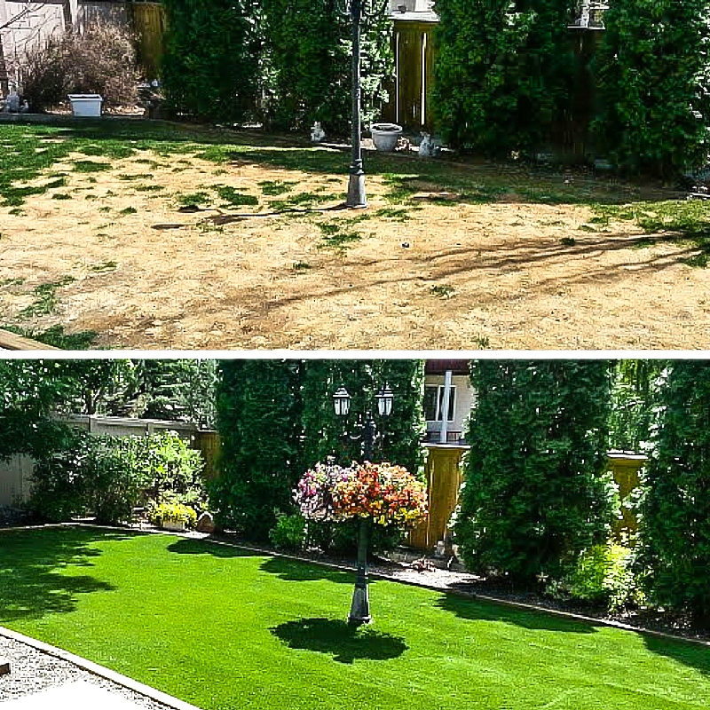 Before and After Residential Lawn
