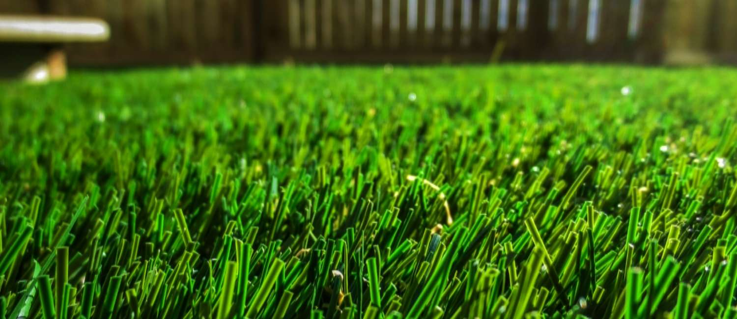 TIRED OF FIGHTING NATURE FOR A PERFECT LAWN?