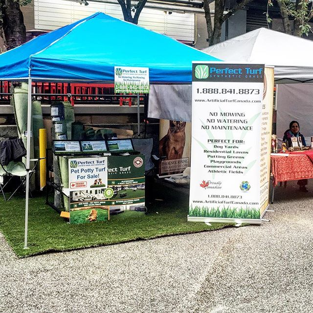 Come check us out at PetAPalooza today in Yaletown! 1100 Mainland Street from 11-4. We'll be showing off our North American-made pet turf — high quality and designed with your best friend in mind — durable, made to last, easy to clean, beautiful and lush. Say goodbye to brown spots, mud and ripped up lawns and hello to a pet-tastic, low-maintenance, transformed lawn. . . Ready to transform your outdoor space? Follow the link to request a quote. . . . . . . . . . #artificialgrass #yvr #perfectturf #artificiallawn #artificialgrass #perfectlawn #syntheticgrass #greengrassvancouver #beautifullawnvancouver #petturfvancouver #artificialgrassvancouver #artificialturfvancouver #greengrass #beutifullawns #greatlawnyvr #lawnenvy #pets #dogs #doglove #puppylove #petrufyvr