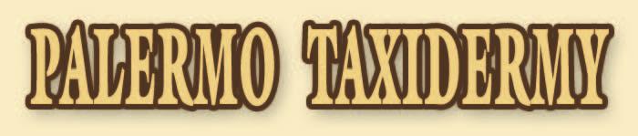 Palermo-Logo.png