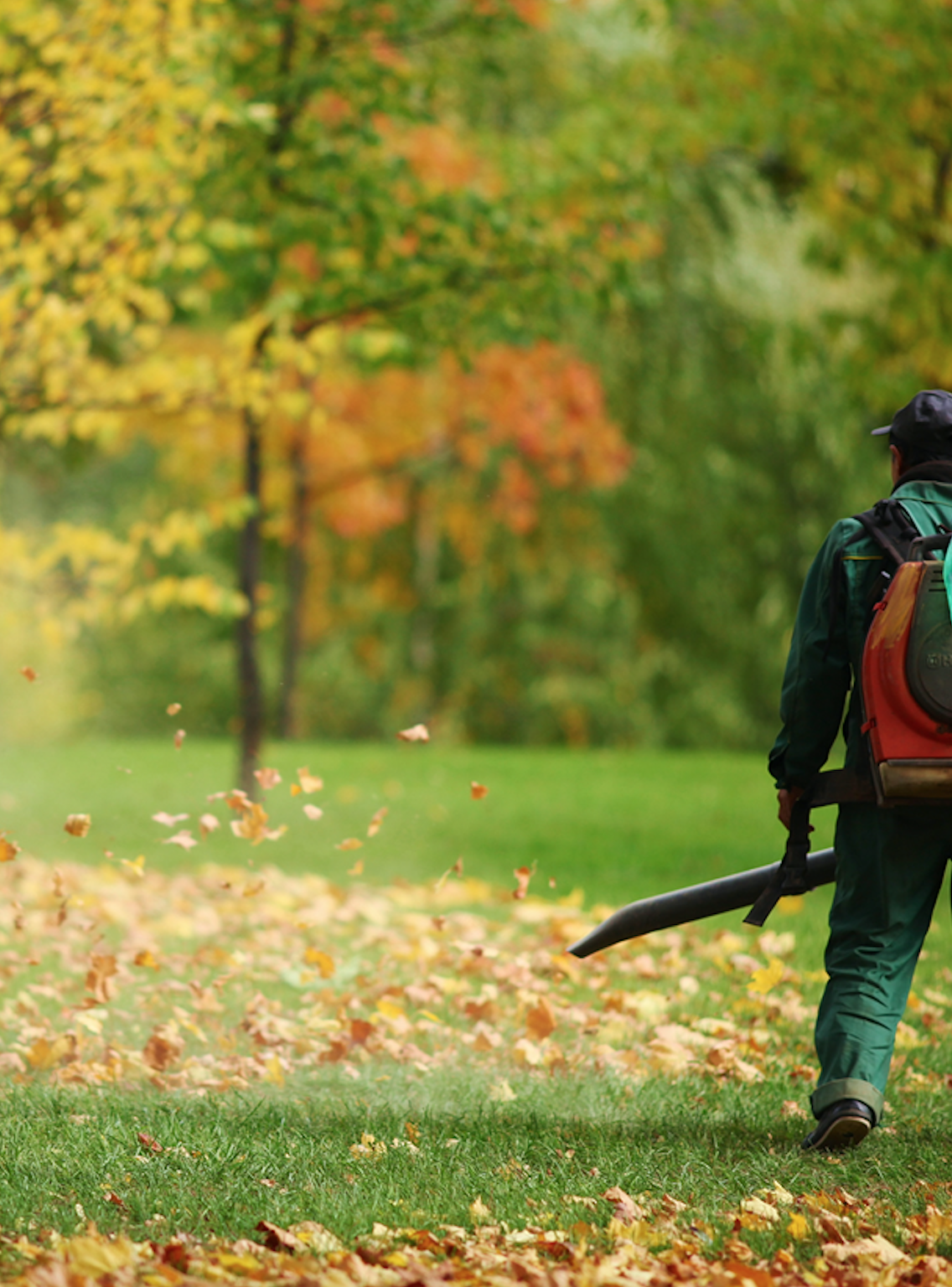 Landscape maintenance including spring and fall clean ups in Wexford, Allegheny County, PA