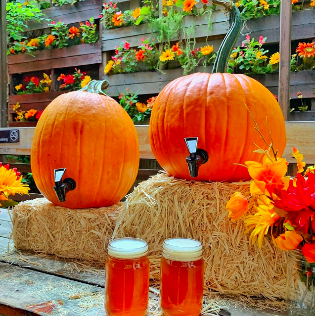 Paint your face with pumpkin ale this weekend.                                                                          Photo: Loreley/Facebook