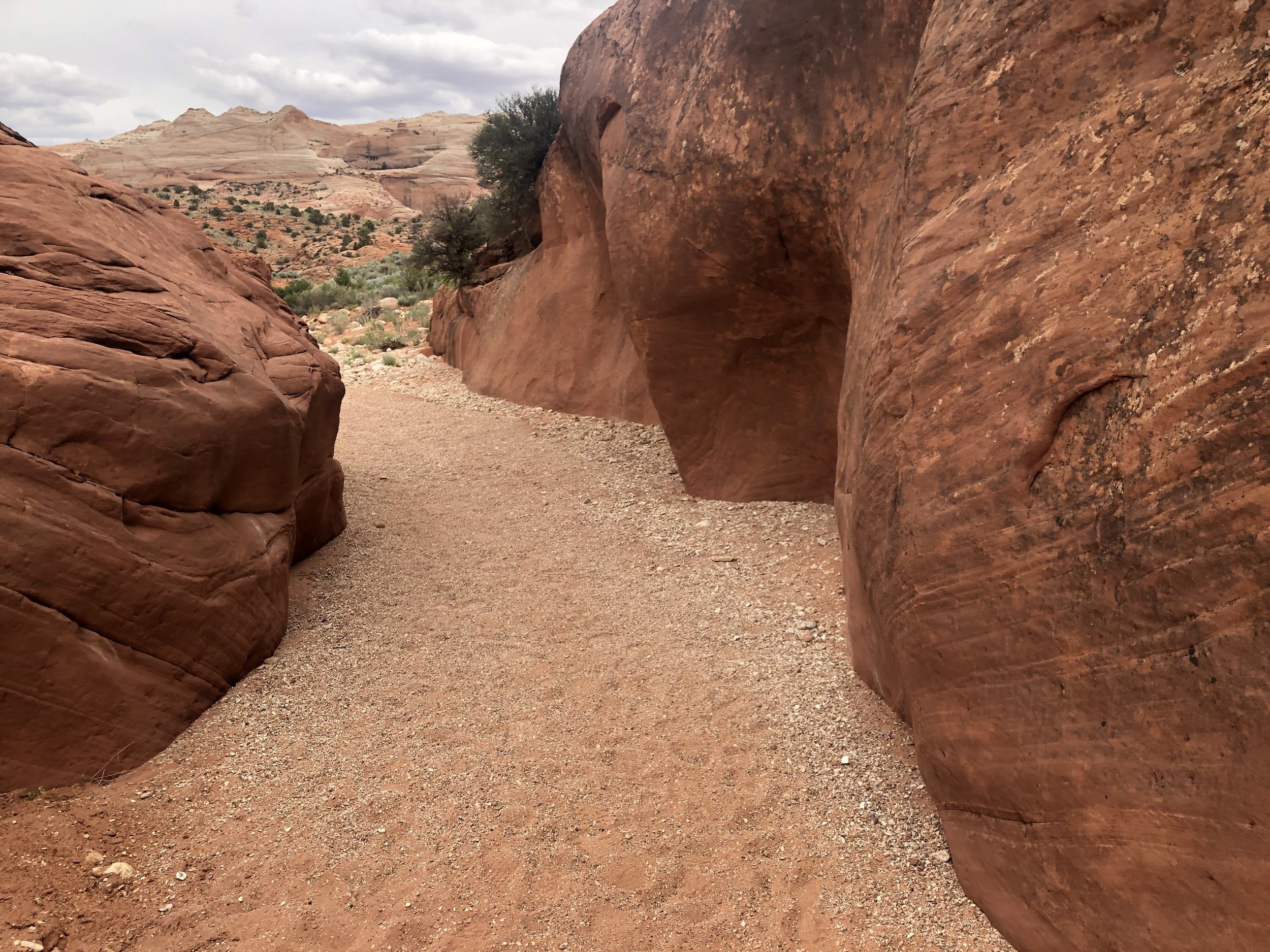 travel-out-office-adventure-utah-wire-pass-hike