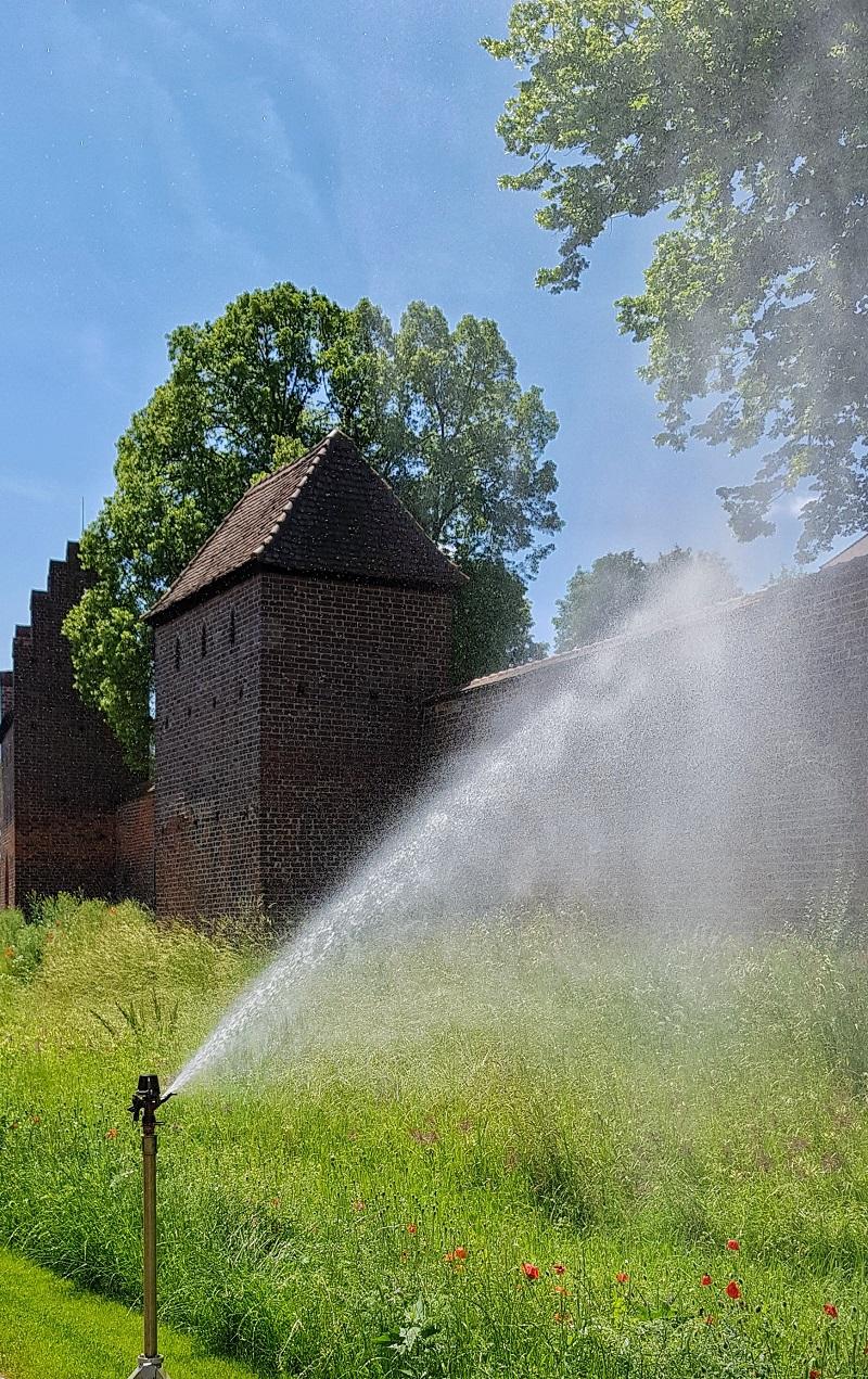 Landesgartenschau Wittstock Dosse 2.jpg