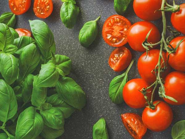 tomatoes-basil.jpg