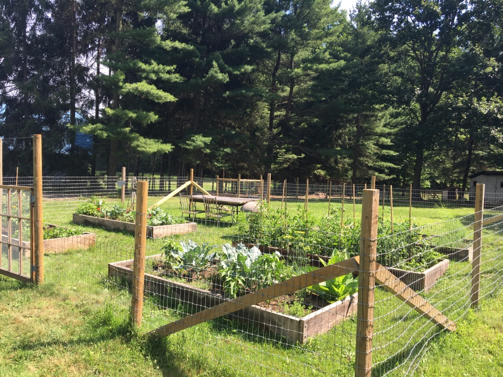 GARDEN - After years of growing a traditional vegetable garden, we made the switch to raised beds and are never looking back! I'm sharing our process, tips and what we love to grow.