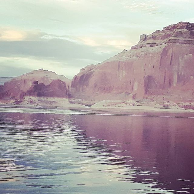 Camel Point #powell